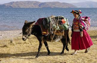 Âne et femme au bord du lac Titicaca