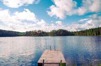 Au bord d'un lac en Finlande l'été