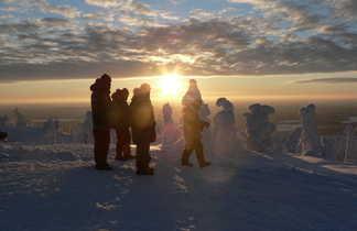 Arbres candélabres, Laponie