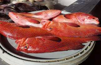 Au marché aux poissons de Mindelo