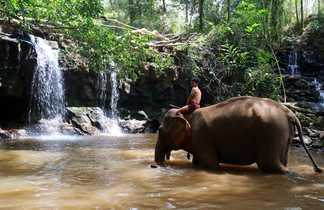 bain elephant Mondolkiri