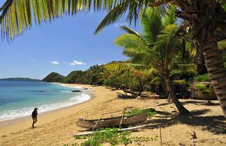 Balade sur la plage près d'Anakao, près de Tulear