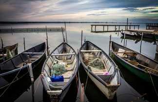 Bassin d'Arcachon bateau