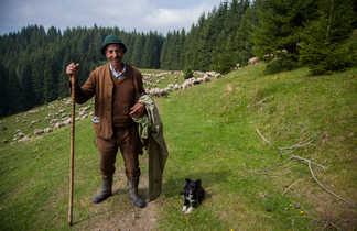 Circuit Liberté randonnée Carpates Roumanie
