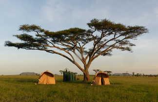 Bivouac privatisé sous un acacia au Serengeti