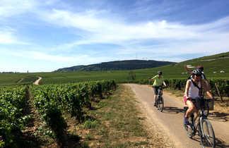 Cyclistes entre les vignes en bourgogne sud