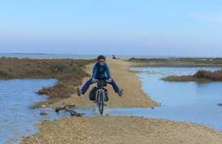 camargue en vélo dans les marais
