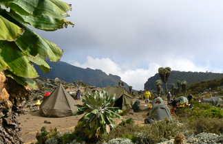 Campement sur le Kili