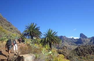 Canaries, Lanzarote, Tenerife, La Gomera, La Palma