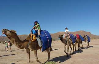 Caravane de chameaux en famille, Maroc