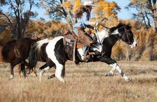 cavalière ranch Colorado