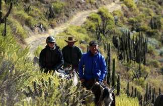 Cavaliers dans le Canyon de Colca