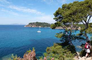 Chemin en bord de mer sur l'île de Port Cros