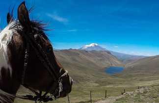 cheval devant une laguna volcanique