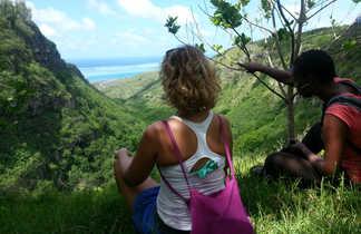 Contemplation de la vue sur la mer et forêt