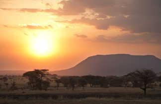 Coucher de soleil dans la parc national du Serengeti