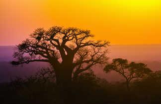 coucher de soleil dans la région du Limpopo