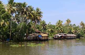 backwaters, croisière, Inde du sud, Kerala