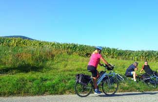 une cycliste passe devant autres cyclistes qui se reposent à couté d'une route devant les vignes