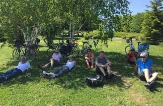 Cyclistes se démentent sous un arbre