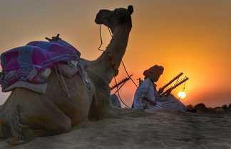 Dans le désert de Thar