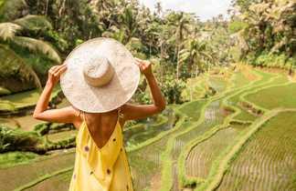 Décors incontournable : les rizières en escalier de Bali