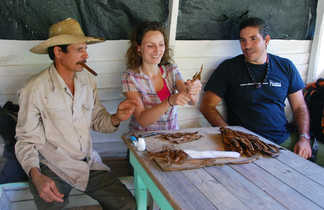 Démonstration de roulage d'un cigare dans la vallée de Vinales