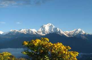 Dhaulagiri, depuis les balcons des Annapurnas