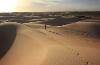 Dunes de l'erg Ouarane, Mauritanie