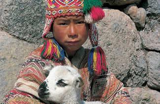 Enfant avec son bébé alpaga dans les bras