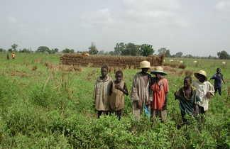Enfants dans les champs dans le Sine Saloum au Sénégal