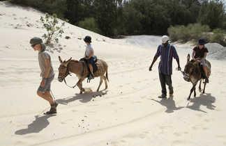 Enfants se baladant à dos d'ânes sur la plage au Sénégal