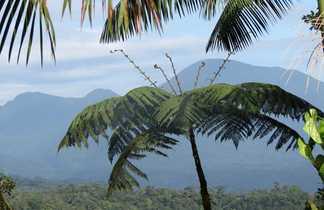 Entre Jungle et Volcan - Costa Rica