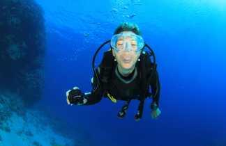 Espiègle plongeuse