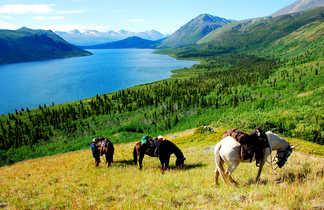 Expédition Yukon à cheval