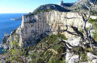 Falaise du Devenson dans les calanques de Marseille