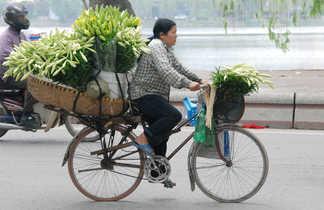 Femme faisant du vélo dans les rues d'Hanoï au Vietnam