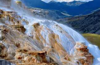 Formations calcaires de Mammoth Hot Spring dans le Parc de Yellowstone