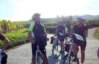 Groupe à vélos s'arrêtent dans les vignes en alsace