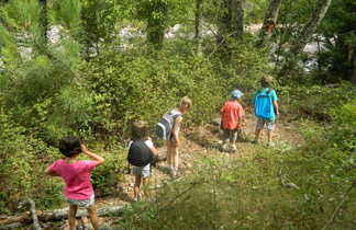 Groupe d'enfants randonnant en forêt