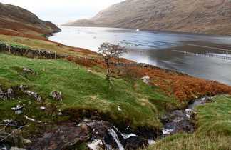 Killary Fjord Connemara Irlande
