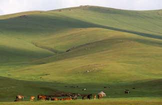 Vue sur les plaines en Kirghizie