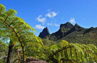 La Nouvelle,  Hellbourg, la Réunion