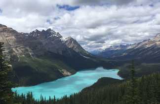 Lac Peyto sur la route des glaciers, Canada