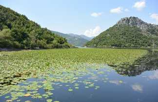 Lac Skadar, Montenegro