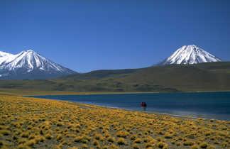 Laguna Miscanti sur l'altiplano dans le désert d'Atacama