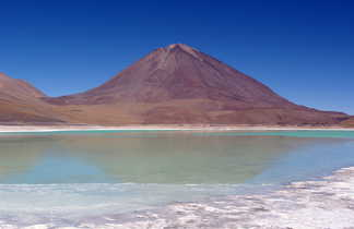 Lagune verte sans le sud Lipez et en arrière plan le volcan Licancabur