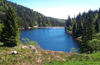 Le lac des Truites dans le massif des Vosges