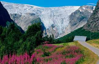 Le Nigardsbreen, plus grande calotte glacière d'Europe continentale