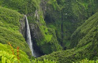 La cascade Le Trou de Fer dans l'île de la Réunion